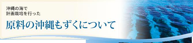沖縄 伊平屋島などの生産者が計画栽培した 原料の沖縄もずくについて